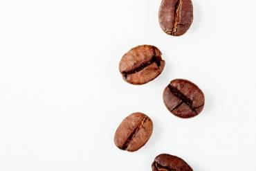 Identificar variedades de café según sus granos