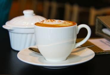 Diferencias café de especialidad y gourmet