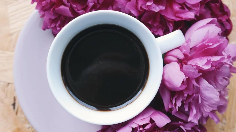 Valores que se evalúan en una cata de café