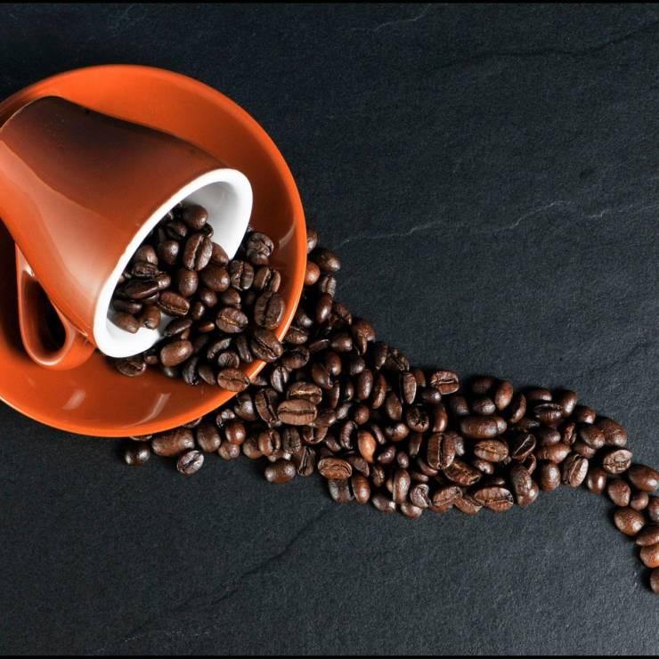 Tomar café reduce la mortalidad
